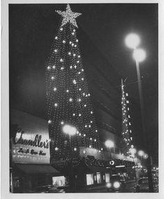 0891f9dc2a55c 128 Best Cincinnati Vintage Images images in 2019