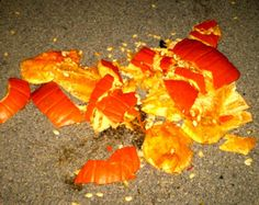 An Angry Kid and a Pumpkin - A short story for this time of the year on Steph's Scribe. www.stephsscribe.com