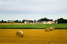 Hay Bales in Emilia-Romagna, Italy
