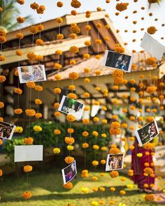 So cute putting photos with the flowers!!!