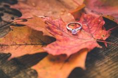 Fall Engagement / Wedding Photography / Toronto Photographer / www.wilsonhophotography.com Wedding Photography Toronto, Engagement Photography, Fall Engagement, Engagement Shoots, Toronto Photographers, Jackson, Silver Rings, Stud Earrings, Engagements