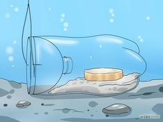 Make a Minnow Trap Step 8.jpg