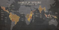 Flavors of the Coffee Belt | Visual.ly