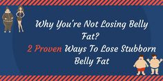 (3) Twitter Stubborn Belly Fat, Lose Belly Fat, Twitter, Memes, Movie Posters, Belly Fat Loss, Film Poster, Popcorn Posters, Animal Jokes