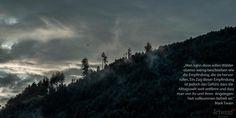 Edle Wälder