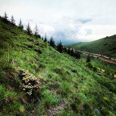Alidağı means Mounth of Ali, Kayseri, Turkey Armenia, Ali, Turkey, Mountains, Nature, Travel, Peru, Voyage, Viajes