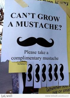 Take a mustache and look like a sir. from www.lolwall.co