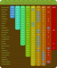 Seeding starting chart. It's good to know what can grow when.