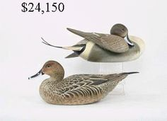 ward brothers decoys - Google Search