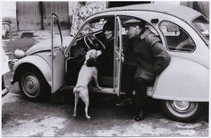 Witold Gombrowicz and The Dog Psina :-) #books BookLikes.com