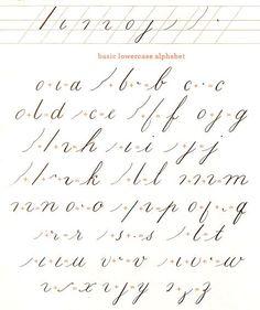 cursive alphabet fabric by lbdavidson on Spoonflower