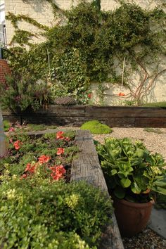 Fruit and Veg Garden in East London - Earth Designs Garden Design and Build Raised Vegetable Gardens, Veg Garden, Raised Garden Beds, Vegetable Gardening, Small Back Gardens, Railway Sleepers, Boundary Walls, Small Courtyards, London Garden