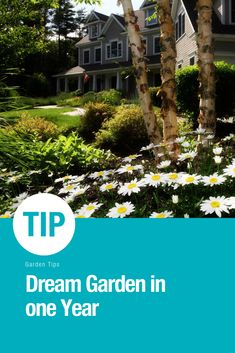You want to have a beautiful garden and that very fast. With our tips you learn how to have one within one year. #passioneveryseason #garden #gardening #plants #tips