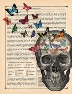 I think of this as beautiful n life in the most unusual places~  Butterflies Art Print Anatomy Skull Dictionary Art by BlackBaroque
