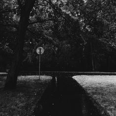 August 18, 2015, 4:09 PM | surlemisanthrope | VSCO Grid