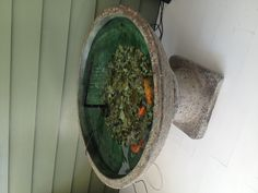 My fish pond on the back deck. My gold fish are over 8yrs old.