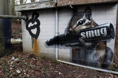 "Graffiti by Smug One   ""Squirrel Making His Nut"""