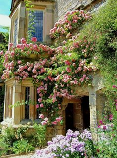 exquisite gardens climbing roses on an old stone home. Derbyshire