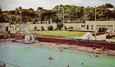 The Eastern Province ASA was founded sometime before the time that the South African Amateur Swimming Union was founded at Port Elizabeth in The. St George's Park, Port Elizabeth, Small Town Girl, Small Towns, South Africa, Swimming Pools, Cape, The Past, Mansions