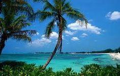 oktanofiyanto.blogspot.com Beautiful World Lyrics, Discovery Channel, Paradise Island, Atlantis, Predator, Places To Visit, Vacation, Beach, Outdoor Decor