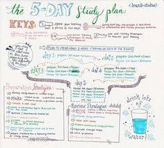 brandi-studies: Exam season is upon us (actually, exam season has been this entire semester for me, really. I've had at least one exam every week since January) so I decided to make a little info graphic on the 5-day study plan.