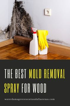 Having mold growth in your home poses a serious risk to your family's health and overall well-being. Your home needs to have the mold eradicated before you can truly start to feel an improvement. That's why you need to uncover the truth about which brand offers the top mold removal spray for wood.