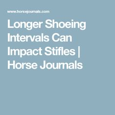 Longer Shoeing Intervals Can Impact Stifles | Horse Journals