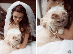 Pets @ Your Wedding
