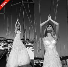 2014 New Autumn Wedding Dresses Ball Gown Zipper Appliques Organza Sexy Wedding dress High quality Famous Designer Free shipping
