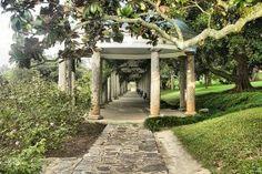 Wisteria Arbor, Maymont Park, Richmond, VA, USA
