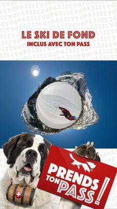 Une activité comprise dans le PASS Saint-Bernard #MyPSB Saints, Movies, Movie Posters, Art, Cross Country Skiing, Vacation, Landscape, Art Background, Films
