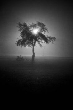 mgła na wołoskiej