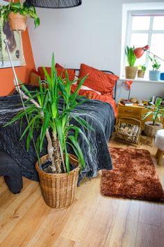 Ein indiviuelles Schlafzimmer muss nicht teuer sein. Flohmarktfunde und Vintage-Elemente kombiniert mit neuen Teilen geben deinem Bedroom eine besondere Atmosphäre. Farbakzente, Pflanzen und natürliche Materialien schaffen Gemütlichkeit. Hier bekommt ihr tolle Inspirationen rund Schlaftimmerdeko, das richtige Bett, Bewttwäsche, Wandfarben, Flohmarktfunde, Pflanzen und mehr! [Affiliate Links + verlinkte Beiträge beinhalten möglichweise Werbung] Shag Rug, Lifestyle Blog, Diy Projects, Vintage, Table, Home Decor, Furniture, Cozy Bedroom, Awesome Beds