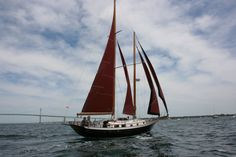 Cheoy Lee Schooner, full sail. Look at those colours...