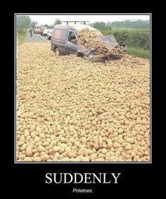 The first person I thought of was Niall! POTATOES !!!
