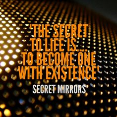 Life Secrets   Secret Mirrors