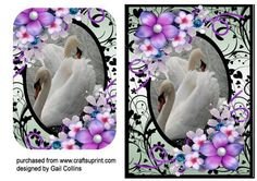 swan frame on Craftsuprint designed by Gail Collins - a lovely fram with swans and flowers - Now available for download!