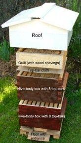Natural Beekeeping R