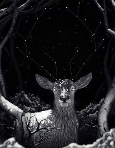 Night Vision by CosmosKitty.deviantart.com on @DeviantArt