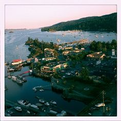 Photo by kimberthemiller • Instagram Salt Spring Island, very magical