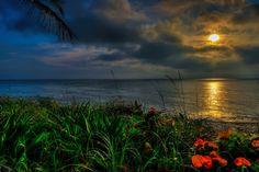 Coral Cove Beach in Tequesta, Florida during sunrise
