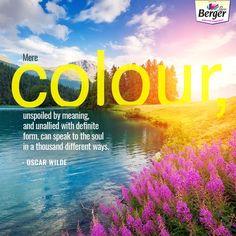 Do colours press the pleasure button in your brain   ColourQuote Color  Quotes, Your 6d1dac4a524f