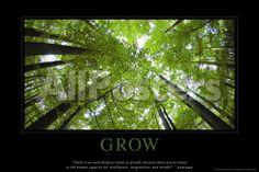 Grow Landscapes Poster - 91 x 61 cm