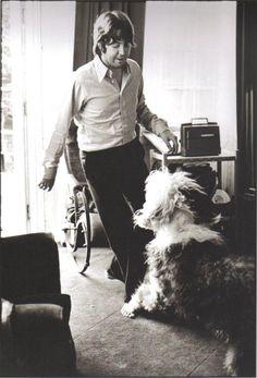 """Paul McCartney and Martha, the dog in the song """"Martha My Dear"""" Paul Mccartney, Ringo Starr, George Harrison, John Lennon, Great Bands, Cool Bands, Martha My Dear, Beatles Love, Beatles Photos"""