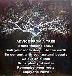 I really love trees! In my mind, I see myself touching an ancient tree and nestling at its roots. I feel comfort, wisdom and grounding from this magnificent presence. This poem speaks to my experience of the Tree's wisdom.