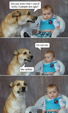 25 Really Adorable Baby And Dog Memes To Make You Feel So Much Better - Lovely Animals World 9gag Funny, Funny Jokes, Hilarious, Memes Humor, Dog Memes, Meme Comics, Grumpy Cat, Funny Animal Memes, Funny Animals