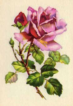 17 Mejores Imagenes De Flores Victorianas Art School Landscape