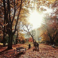 #ojców #ojcowskiparknarodowy #autumn #park