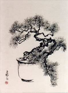 Bonsai Pine by Frederica Marshall Japanese Artwork, Japanese Painting, Chinese Painting, Tattoo Schwarz, Zen Painting, Japanese Tree, Ink In Water, Bonsai Art, Art Japonais