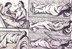 Veel  indianen werden getroffen door ziektes die Europeanen mee namen.
